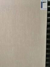 珠山區?;u拋光磚地板磚工程瓷磚工廠直銷,通體大理石瓷磚圖片