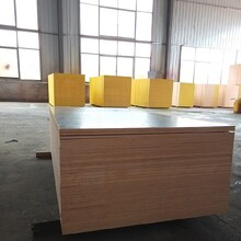 南通從事建筑模板覆膜板安全可靠,建筑模板圖片