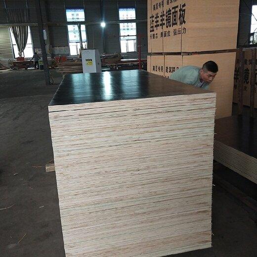 蘇州承接建筑模板覆膜板量大從優,建筑模板
