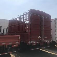 福田奧鈴4.2米高欄貨車北京有賣順義地址圖片