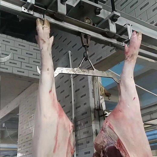 淮安智能軌道電子秤,肉聯廠軌道秤