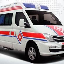 供应救护车出租安全及时图片