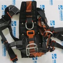 SKYLOTEC斯泰龍泰克安全帶款式齊全,風電專用圖片