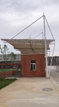 制造體育場看臺防水服務至上,景觀看臺圖片