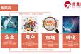 舟山抖音直播品牌全案營銷,品牌策劃