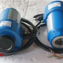 全新DURAG杜拉格火焰探測器安全可靠,火焰檢測器圖片