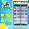 东营生鲜柜-小区果蔬售货机,社区无人果蔬售卖机