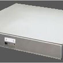 氣柜秤質量可靠,特氣柜秤圖片