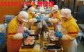 辰逸人力建筑工招人,上海商務能辦國外勞務輸出的地方