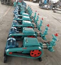 青岛小型单缸泵多少钱,60-8单缸泵图片