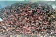 小店高價回收鋼管扣件公司