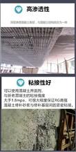 深圳批發聚合物修補砂漿質量可靠,高強修補砂漿圖片