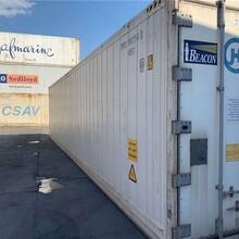 钵满二手冷藏集装箱,承接冷藏集装箱运输图片