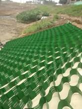 烏海土工格室服務至上,蜂巢土工格室圖片
