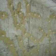 四川涼山西昌市水工專用修補砂漿圖片