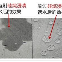 玉溪批發硅烷硅烷乳液粉末膏體,硅烷膏體圖片