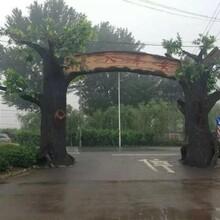 兰州景区假树大门图片