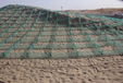新疆防沙網,沙漠防沙網格,綠色防紗方格,塔城阻沙網固定立桿
