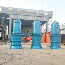 QZB-潛水軸流泵在引水工程中的應用圖片