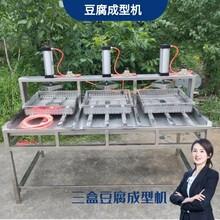 廣西豆腐壓榨機不銹鋼豆腐壓榨成型機設備廠家圖片