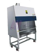 金華紫外滅菌生物安全柜BHC-1000B2全排潔凈安全柜圖片