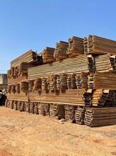 云南拉森鋼板樁施工、租賃打樁機租賃圖片