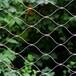 安平縣不銹鋼繩網陽臺防護,多重質檢,質量過硬