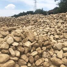 桐廬天然小黃石景墻石自然石風景石