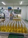洗護用品清爽控油植物精華液廠家代工