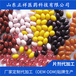 南極磷蝦油凝膠糖果代工生產磷脂蝦青素磷蝦油軟膠囊貼牌代加工