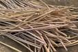 舞鋼電纜回收(舞鋼電纜回收處理流程)