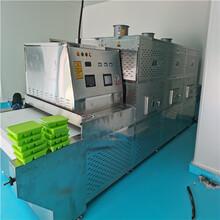 20KW隧道式微波加热设备山东立威厂家图片