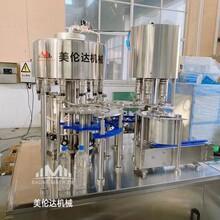 全自動玻璃水灌裝機小型冰瓶灌裝設備車用尿素水灌裝機現貨圖片