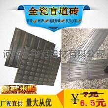 深圳市寶安區機場站臺全瓷盲道磚類型/品牌L圖片