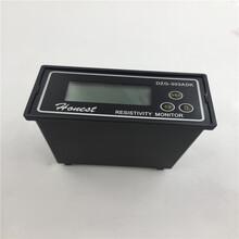 上海誠磁工業高純水電阻率儀智能型電阻率儀DZG-303ADK實拍現貨圖片
