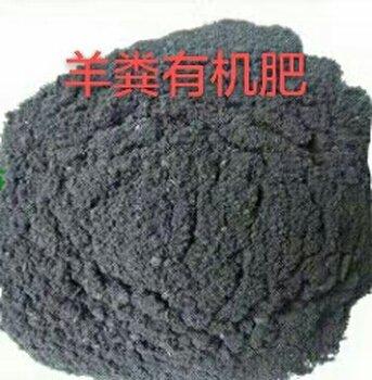 三品肥业羊粪有机肥多少钱一吨改量土壤有机肥生产厂家