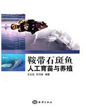 石斑魚養殖技術大全視頻教程資料書籍淡水石斑魚飼養圖片