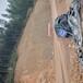 杭州邊坡生態修復法國愛森土壤粘合劑