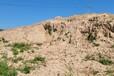 玉溪邊坡防護高性能生態基材綠化工程