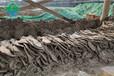 西藏山南自動液壓隔膜壓濾機廠家供貨