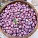 中晚熟脆紅李苗供應商;無錫晚熟脆紅李子樹苗供應