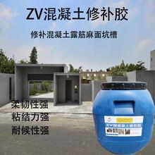 黑龍江省ZV混凝土修補膠資訊圖片