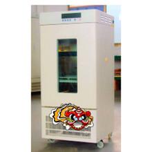 育種試驗的恒溫設備BOD培養箱圖片