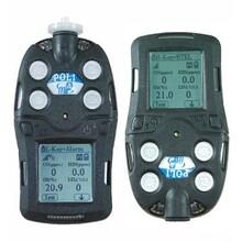 PGM-2400QRAEII四合一氣體檢測儀圖片