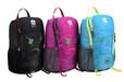 年終企業團體旅行雙肩包休閑戶外背包定制愛自由箱包