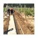 平涼樹木苗木滴灌工程造價清單