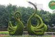 理塘绿雕植物墙,2022春节植物雕塑,广场大花篮