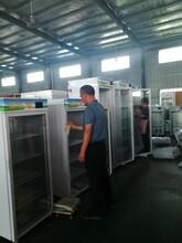 LVKE-綠科臺式酸奶商用熱飲機歸一學生奶-冷暖雙溫柜LK-42R圖片