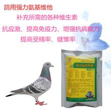 鸽子用维生素鹌鹑用多种维生素高含量维生素肉鸽多维种鸽多维图片