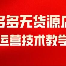 北京拼多多小象店群管家软件,小象采集软件,大象拼上拼采集软件图片